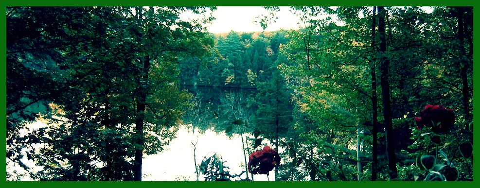 Adirondack Pond View
